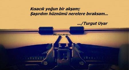turgut twit 44