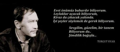 turgut twit 55