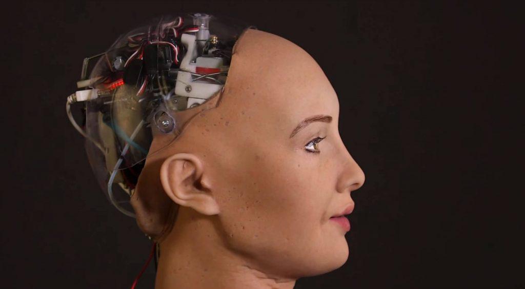 YHiçbir Gelin Robot Değildir