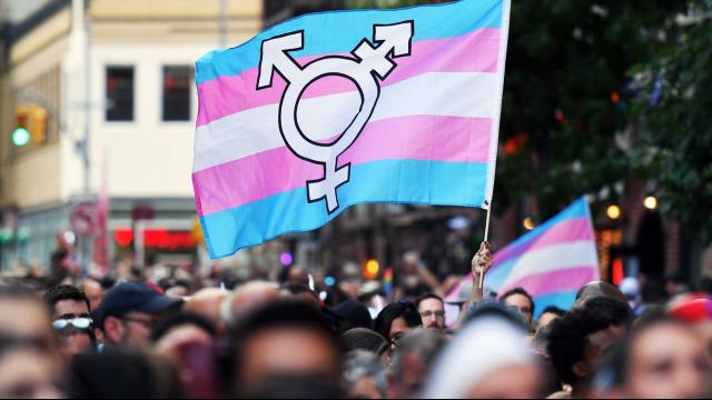 Y7 Yaşındaki Trans Kız Çocuğun Davası Tüm Trans Çocukları Yakından İlgilendiriyor