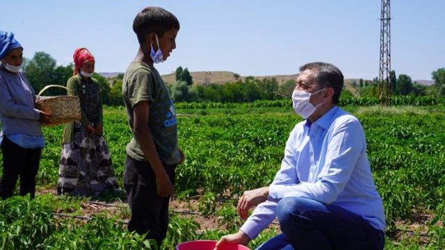 YBir fotoğraf karesinde çocuk işçiliği