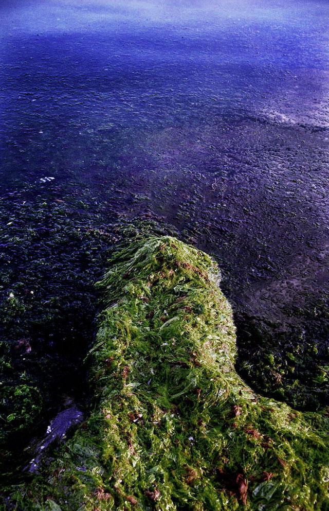 YVarılamayan Liman: İyiliğin Kıyıları